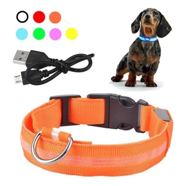 LED Dog GlowingCollar